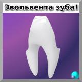 Эвольвента зуба!